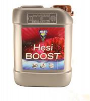 Hesi Boost 2,5 Liter